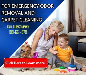 Cleaning - Carpet Cleaning Westlake Village, CA